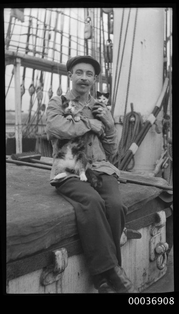 Ein Seemann mit einem Kätzchen und einer Katze, um 1910 http://www.flickr.com/photos/anmm_thecommons/9388648829/