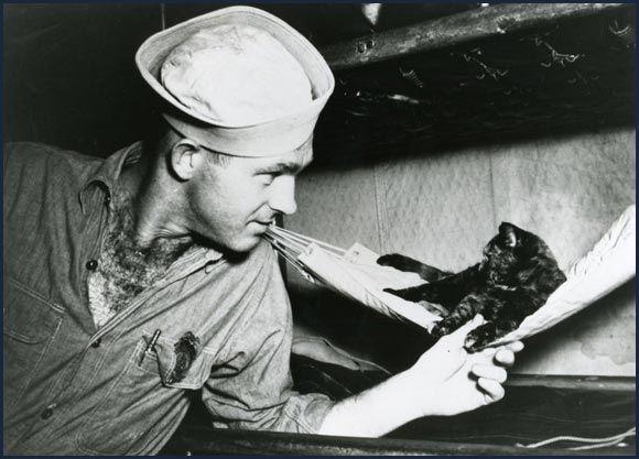 """Das Maskottchen """"Saipan"""" der USS New Mexico, um 1944"""