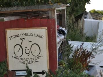 überwucherter Fahrradverleih